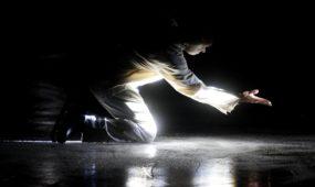 Dailiojo čiuožimo spektaklis