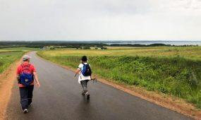"""Šv. Jokūbo """"Camino Lituano"""" kelias"""