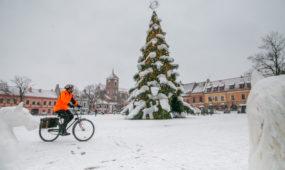 Kauno kalėdinę eglę apklojo tikras sniegas