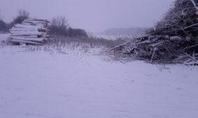 Lampėdžio saloje statoma irklavimo bazė