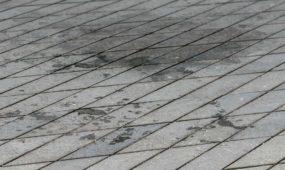 Laisvės alėjos grindinys po mugės