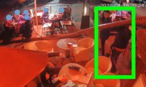 Restorane pavogti striukėje laikyti pinigai
