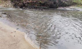 Girstupio upelis A. Mickevičiaus slėnyje