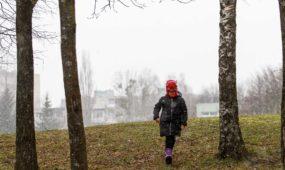 Užgavėnės Dainavos parke