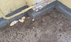 Laiptinės dezinfekcija Garliavoje