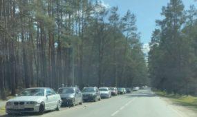 Kauniečių automobiliai Kleboniškio miške
