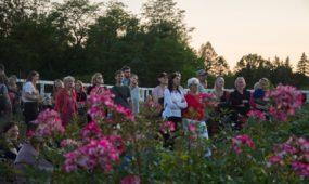 Kvapų naktis botanikos sode