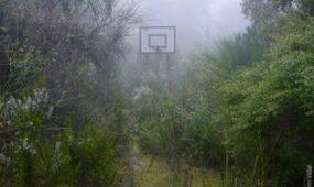 Guillem Vida Forgotten playground