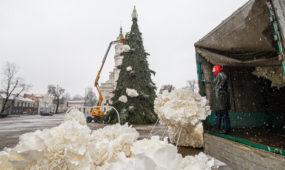 Nupuošiama Kalėdų eglė